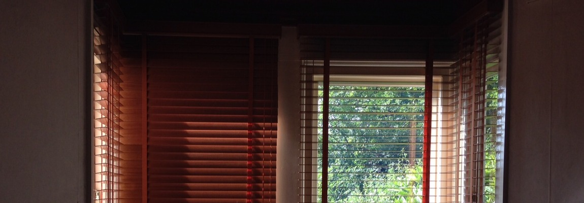 Window Blinds Blinds Direct